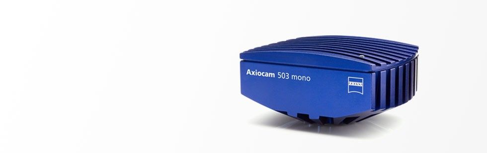 Axiocam 503 color
